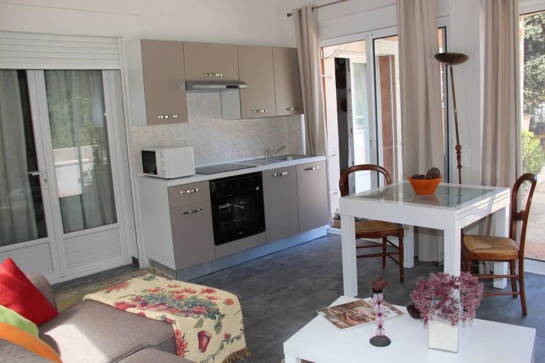 Location de vacances - Gîte à Régusse - Coin cuisine + canapé studio 40m2