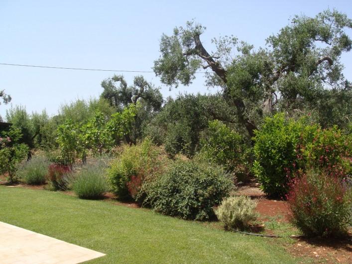 Location de vacances - Villa à Ceglie Messapica - Grands jardins paysagers avec potagers et herbes