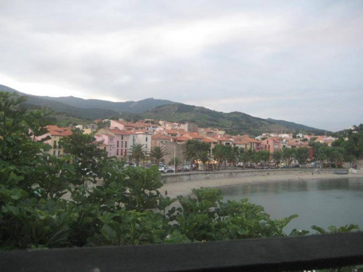 Location de vacances - Appartement à Collioure - Collioure