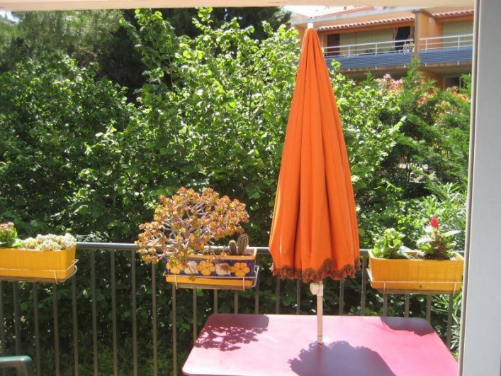 Location de vacances - Appartement à Collioure - Terrasse