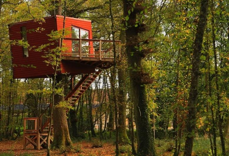 Location de vacances - Cabane dans les arbres à Saint-Vérain - Le Nid Penché, capacité : 2 adultes et un enfant