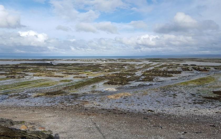 Location de vacances - Appartement à Cancale - Cancale, les parcs à huîtres à marée basse