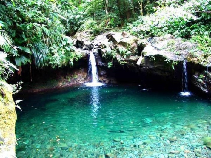 Location de vacances - Villa à Douville - Bassin paradis en pleine forêt tropicale