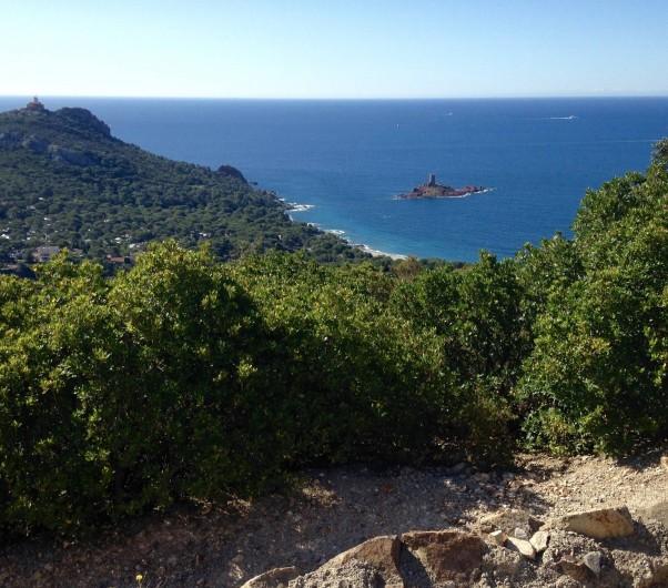 Location de vacances - Appartement à Agay - 10 mn de marche  petit sentier avec vue sue l'ile d'Or...