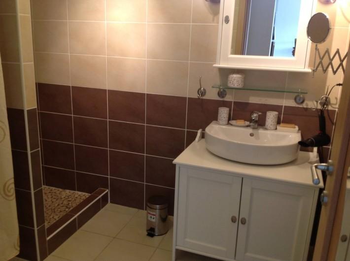 Location de vacances - Appartement à Porto-Vecchio - Salle de bain ( lavabo, douche )