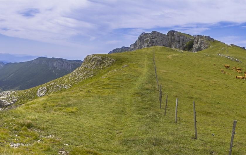 Location de vacances - Gîte à Saint-Julien-en-Quint - Ambel, juste au dessus du gîte