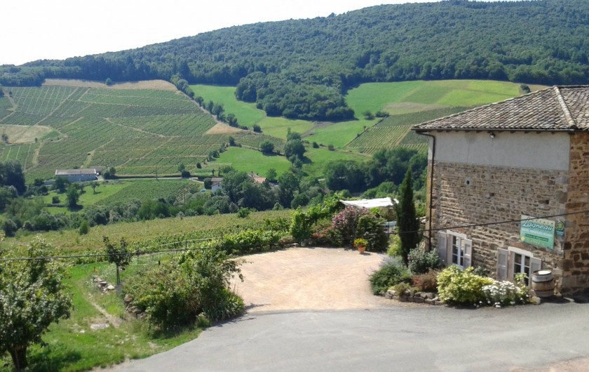 Location de vacances - Gîte à Quincié-en-Beaujolais