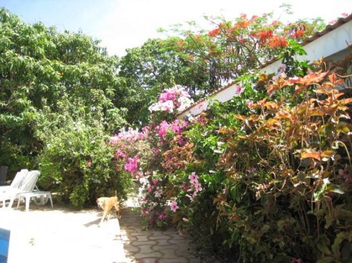 Location de vacances - Appartement à Somone - Vue du parc
