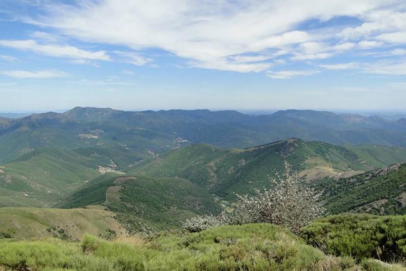 Location de vacances - Gîte à Notre-Dame-de-la-Rouvière - Cévennes Méridionales, depuis le haut de la vallée