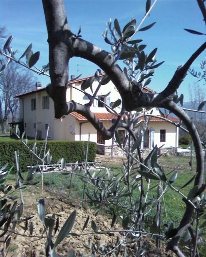 Location de vacances - Appartement à Incisa in Val d'Arno - Cerchiaia vue  du jardin