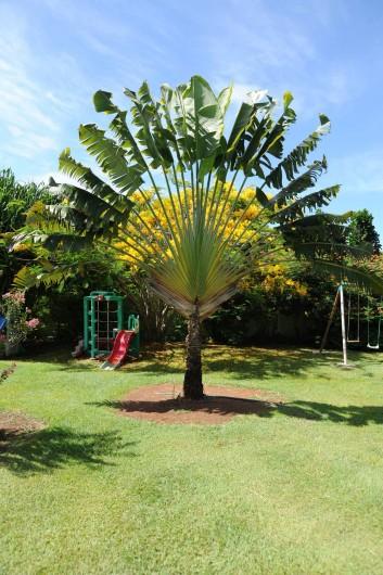 Location de vacances - Bungalow - Mobilhome à Le François - une partie du parc et des jeux pour enfants.