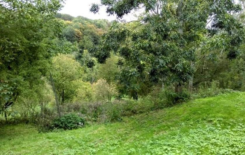 Location de vacances - Chalet à Chivres-Val - La vue du jardin
