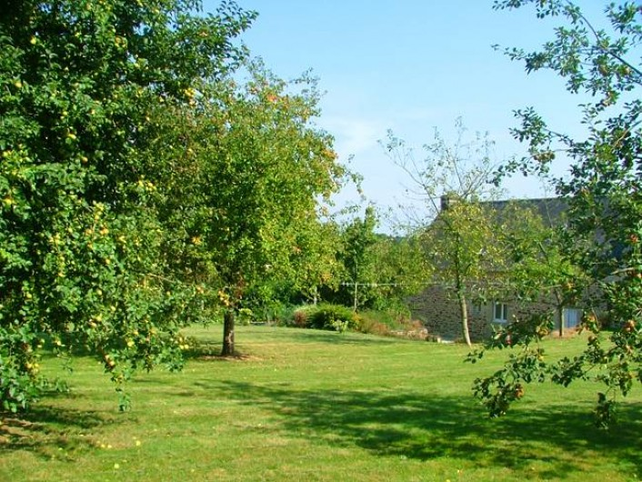 Location de vacances - Gîte à Josselin - Gîte Triskel