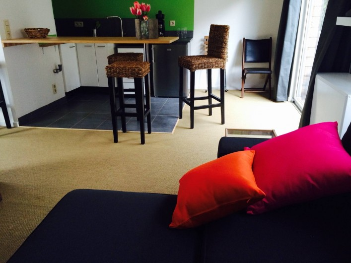 """Location de vacances - Studio à Namur - Canapé lit 2 personnes qualité """"couchage permanent"""" TV câblée, internet"""