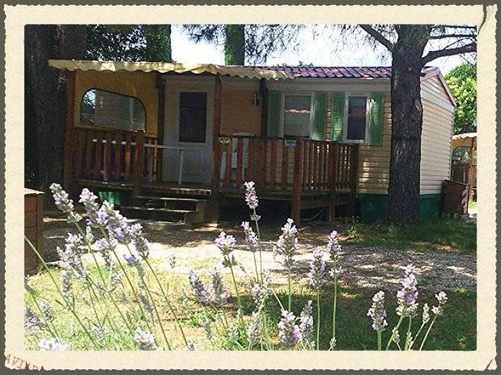 Location de vacances - Camping à Massillargues-Attuech - Mobile home 4 persMimos/Marguerite