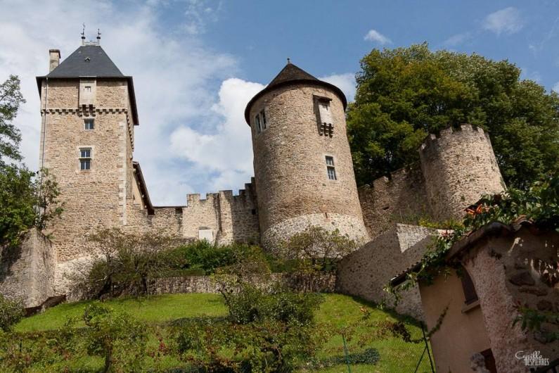 Location de vacances - Gîte à Châteldon - Vue sur le château du                13   eme siècle