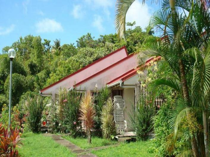 Location de vacances - Studio à La Trinité - Coté jardin les fleurs et les crotons