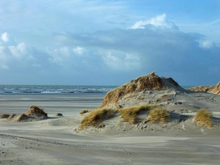 Location de vacances - Gîte à Nibas - les dunes proches du gîte