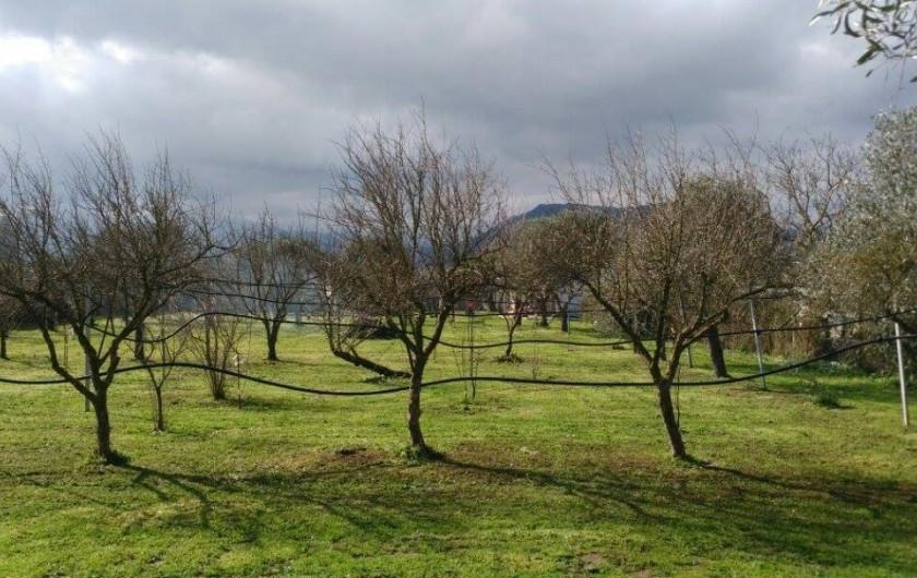 Location de vacances - Chalet à Guspini - Le terrain de 1500 m2 sur lequel se situe la location