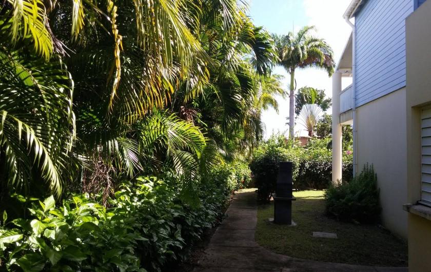 Location de vacances - Appartement à Sainte-Anne - Le barbecue dans le jardin