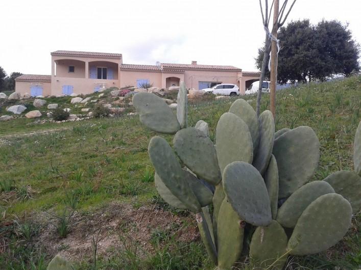 Location de vacances - Appartement à Appietto - la maison