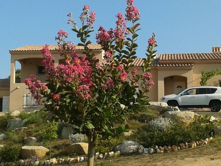 Location de vacances - Appartement à Appietto - maison