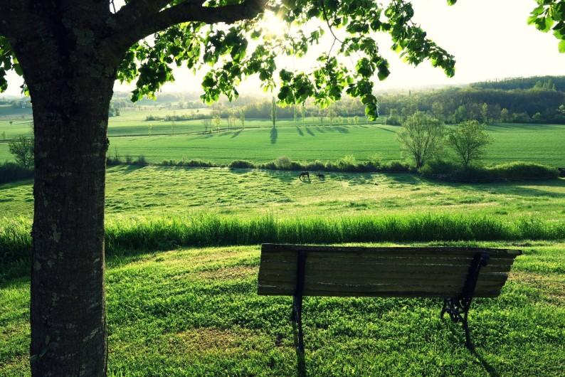 Location de vacances - Gîte à Villeréal - Vue panoramique sur la campagne, le pré des juments, la mare aux canards