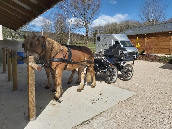 Location de vacances - Gîte à Laviron - Amis cavaliers, cavalières et atteleurs  Nous pouvons vous accueillir