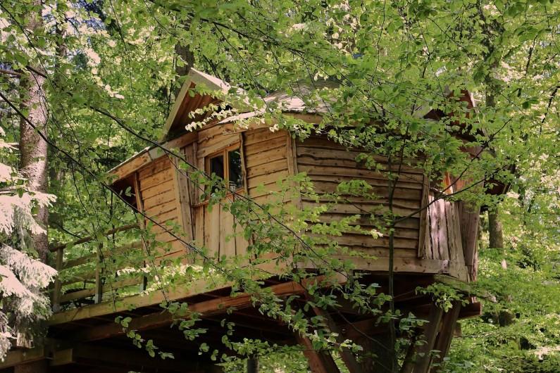 Location de vacances - Insolite à La Chapelle-aux-Bois - Cabane dans les arbres