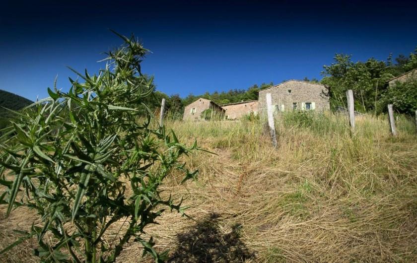 Location de vacances - Chambre d'hôtes à Saint-Barthélémy-Grozon - La maison vue du champ Domaine de Plantât