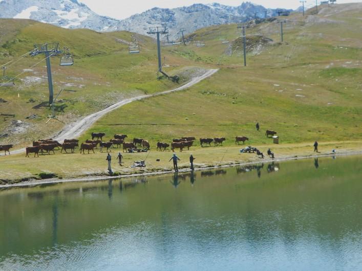 Location de vacances - Studio à Val-d'Isère - pêche au lac de l'Ouillette