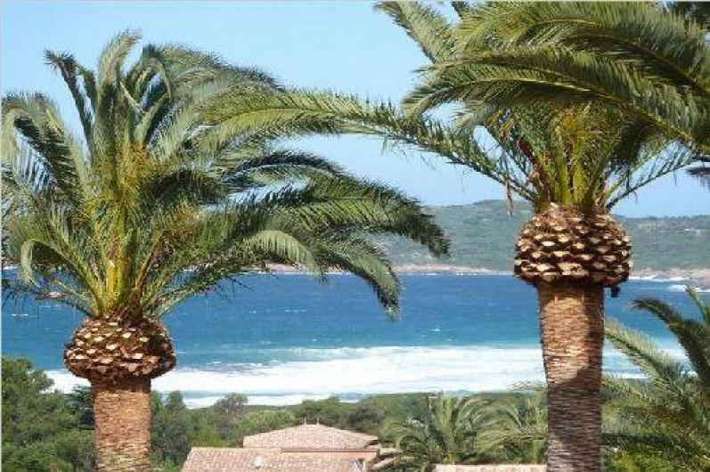 Location de vacances - Villa à Cargèse - la plage