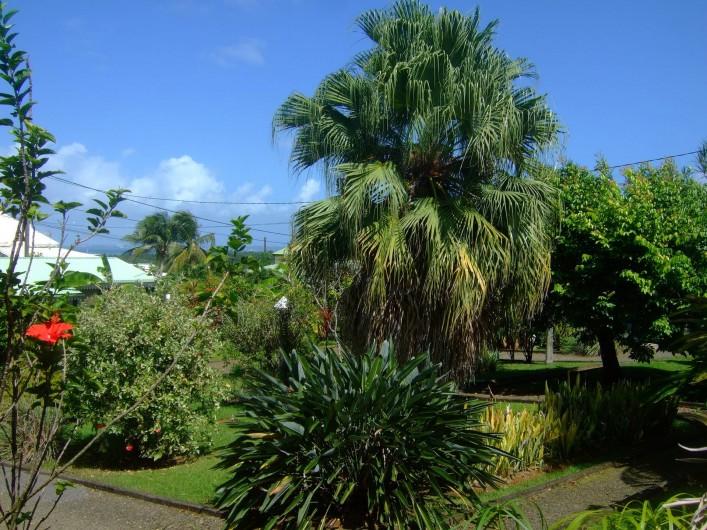 Location de vacances - Bungalow - Mobilhome à Goyave - Le jardin