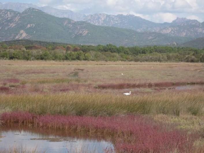 Location de vacances - Villa à Lecci - Lagune