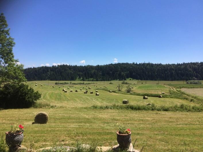 Location de vacances - Gîte à Prénovel - vue depuis la terrasse