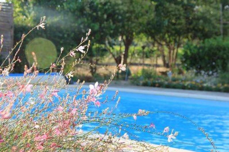 Location de vacances - Gîte à Trausse - piscine
