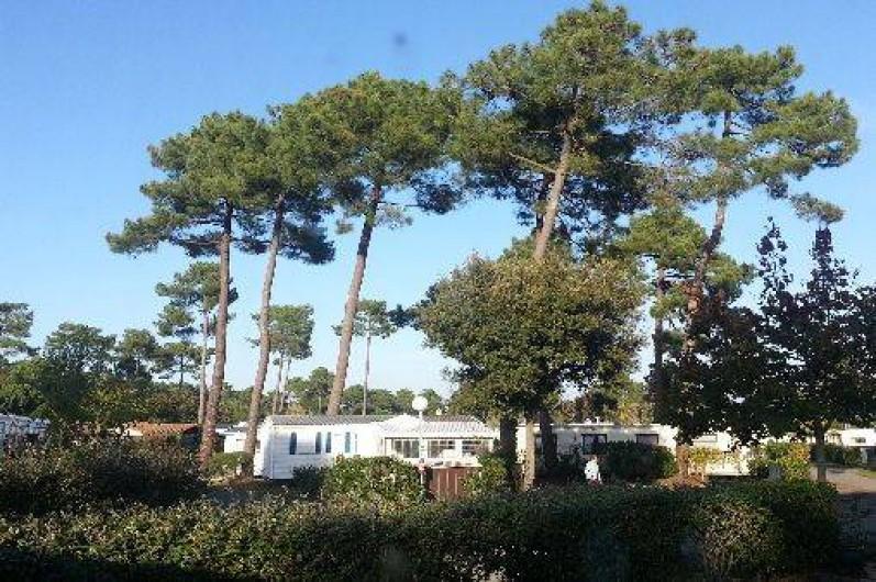 Location de vacances - Camping à Ronce les Bains - Vue du Salon
