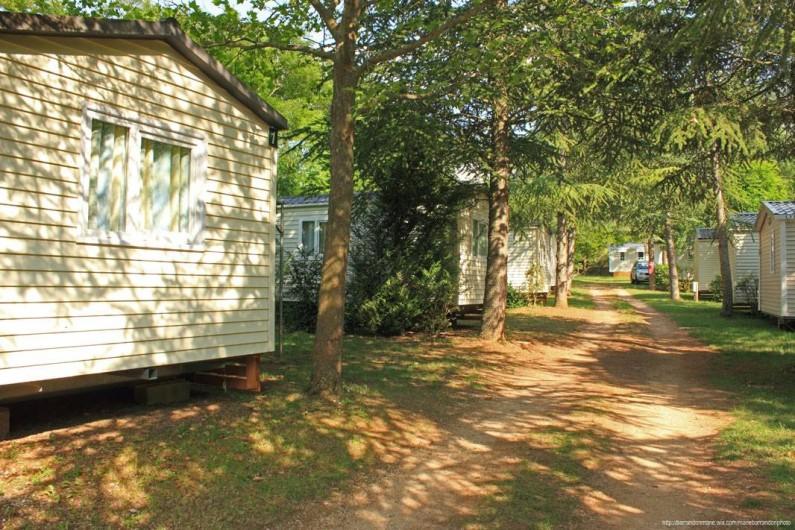 Location de vacances - Camping à Castelbouc - Allée des mobil home