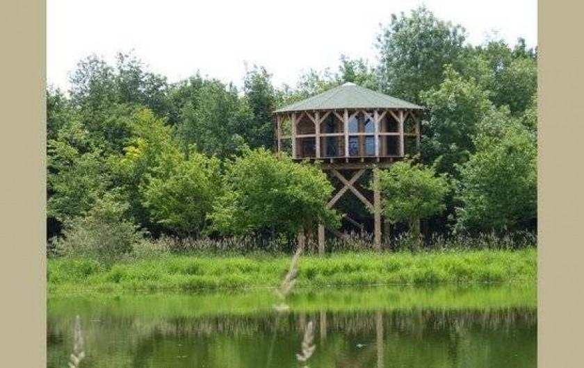 Location de vacances - Cabane dans les arbres à Sainte-Pazanne - Le nid