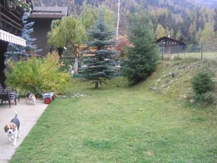 Location de vacances - Chalet à Praz-de-Fort - Jardin