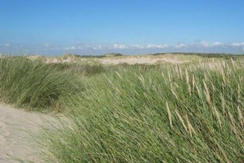 Location de vacances - Maison - Villa à Stella Plage - Dunes de Stella Plage