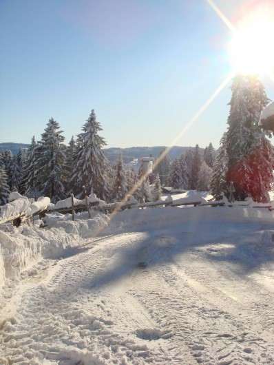 Location de vacances - Appartement à La Chaux-de-Fonds - Paysage hivernal