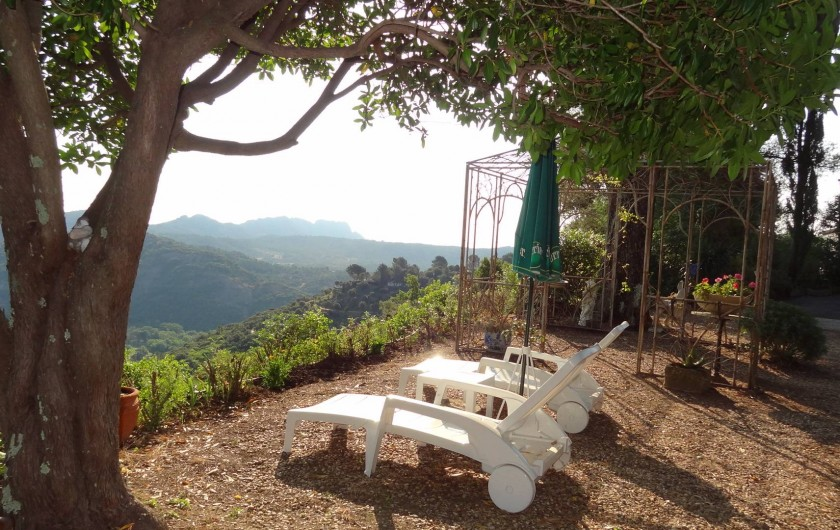Location de vacances - Villa à Le Muy - VUE DU JARDIN