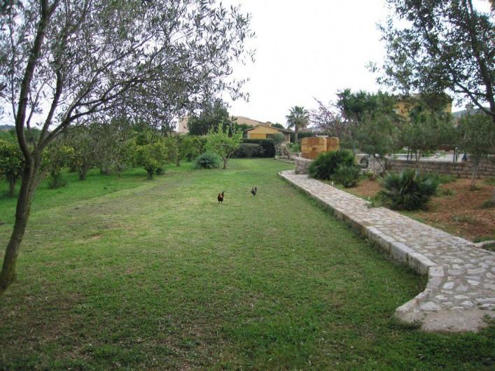 Location de vacances - Villa à Son Carrió