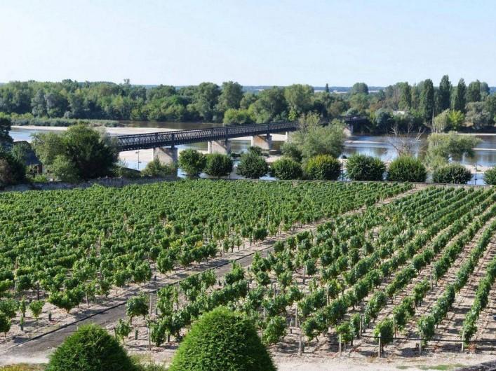 Location de vacances - Appartement à Pouilly-sur-Loire - Vue depuis le gîte sur les vignes et la Loire
