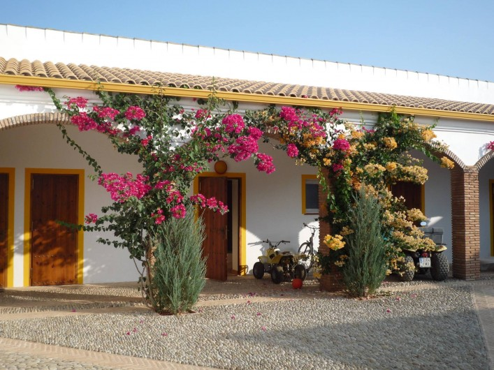 Location de vacances - Villa à Villamartin - LES  6 CHAMBRES DONNENT SUR LE PATIO CENTRAL FLEURI DE BOUGAINVILLIERS