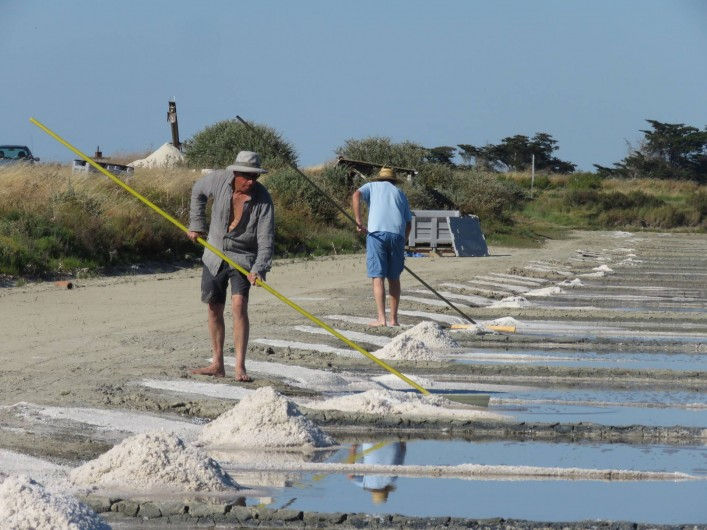 Location de vacances - Villa à Ars-en-Ré - Récolte du sel  ARS EN RE