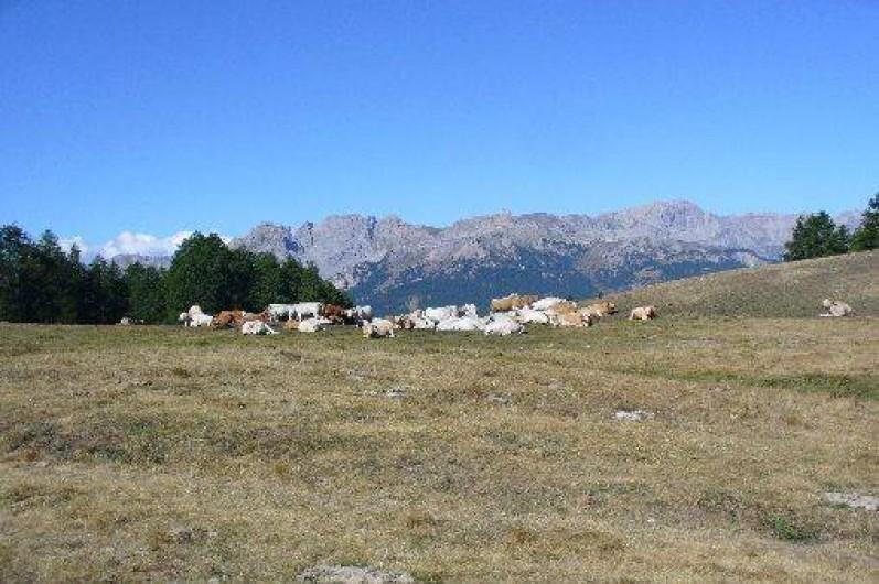 Location de vacances - Appartement à Abries - magnifique vue sur les montagnes