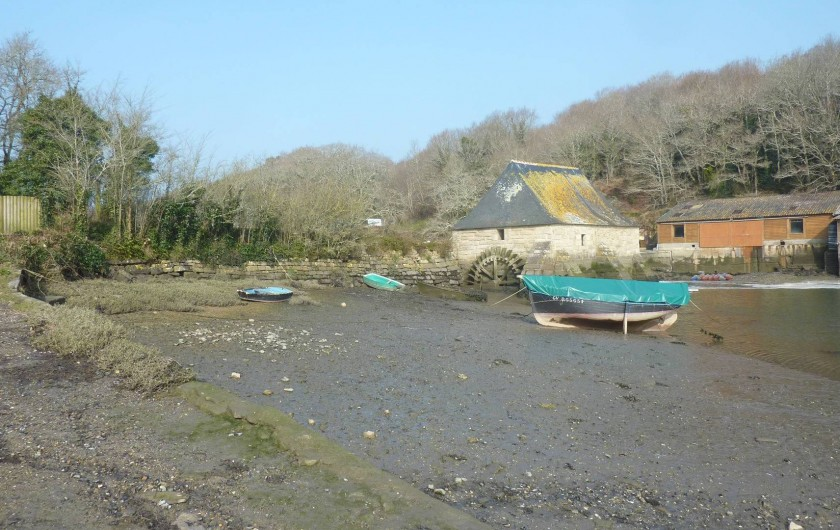 Location de vacances - Villa à Névez - Le Hénan (huîtres, moules, coquillage... )