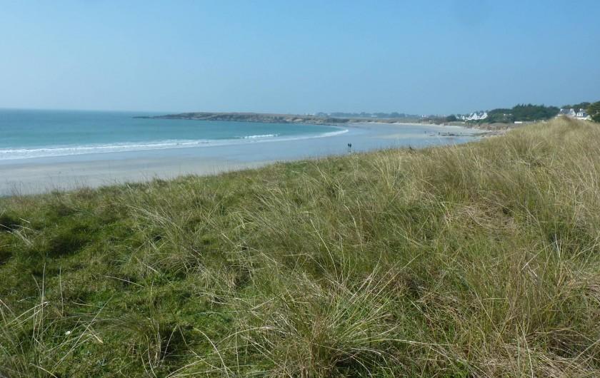 Location de vacances - Villa à Névez - Grande plage de Kersidan. Autres plage  : Ragenez, Trescao, Dourveil